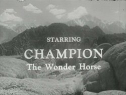 Champion the Wonder Horse Credits