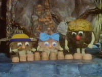 The Pootles play some music